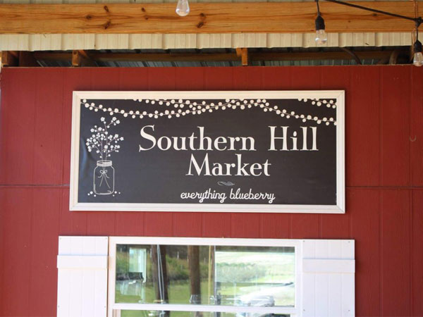 Southern Hill Market, everything blueberry
