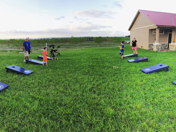 Southern Hill Farms Yard Games